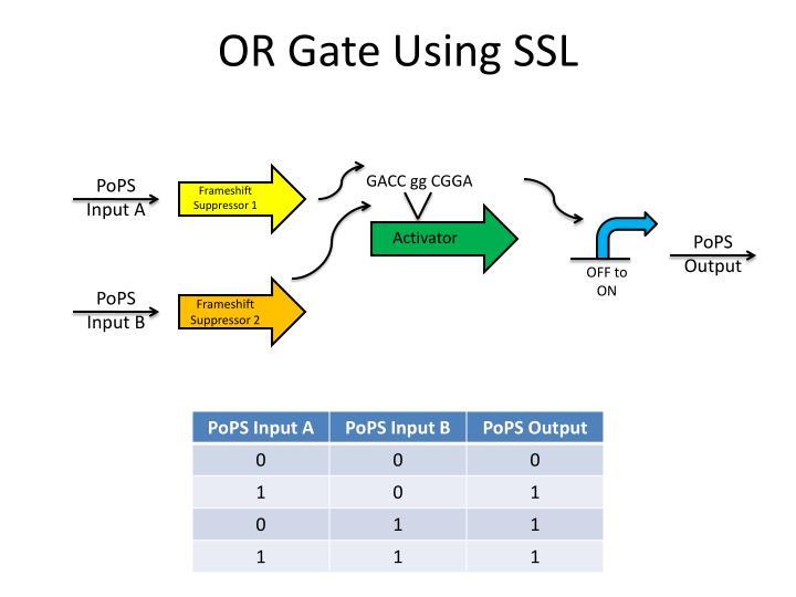 OR Gate Using SSL