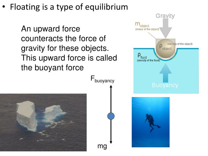 An upward force counteracts the force of gravity for these objects. This upward force is called the buoyant force