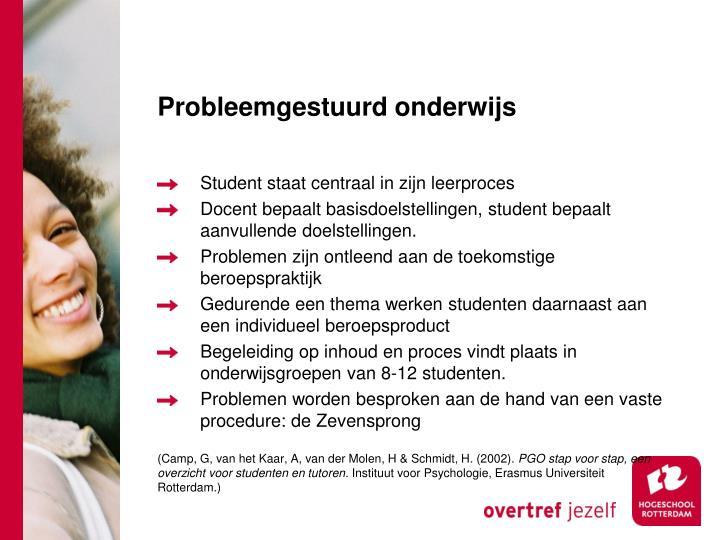 Probleemgestuurd onderwijs