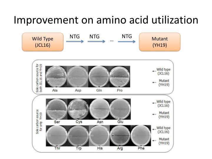 Improvement on amino acid utilization
