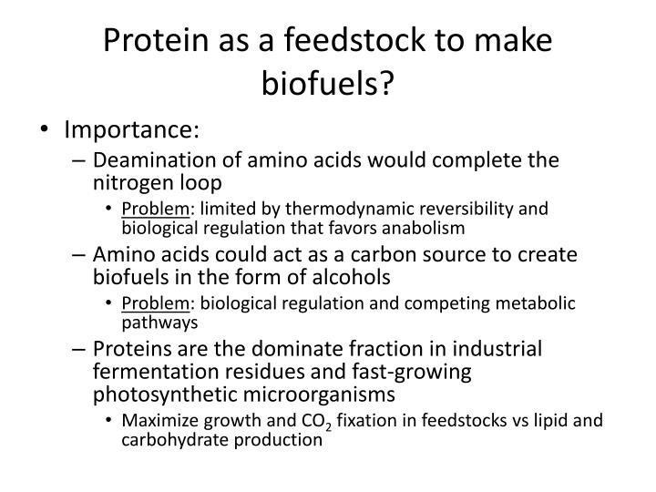 Protein as a feedstock to make