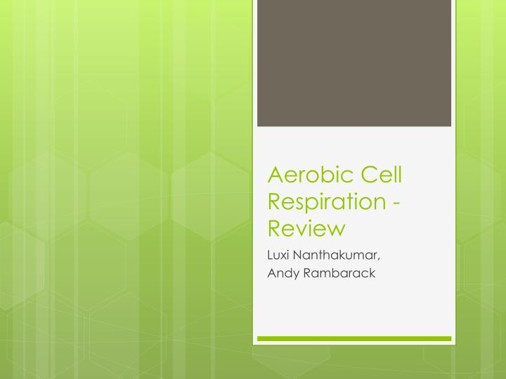 Aerobic cell respiration review
