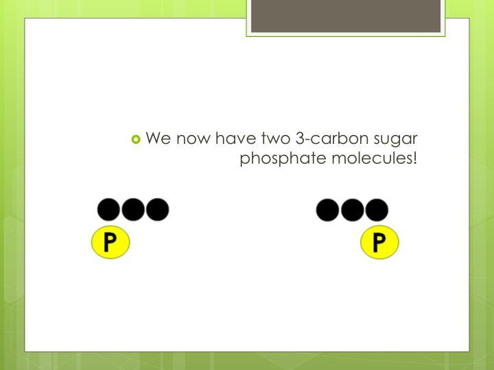 We now have two 3-carbon sugar phosphate molecules!