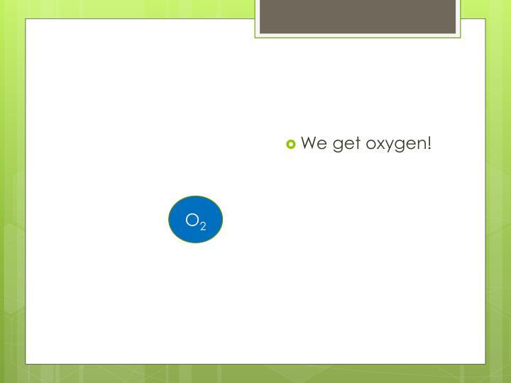 We get oxygen!
