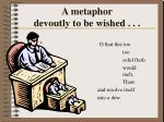 a metaphor devoutly to be wished