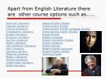 apart from english literature there are other course options such as