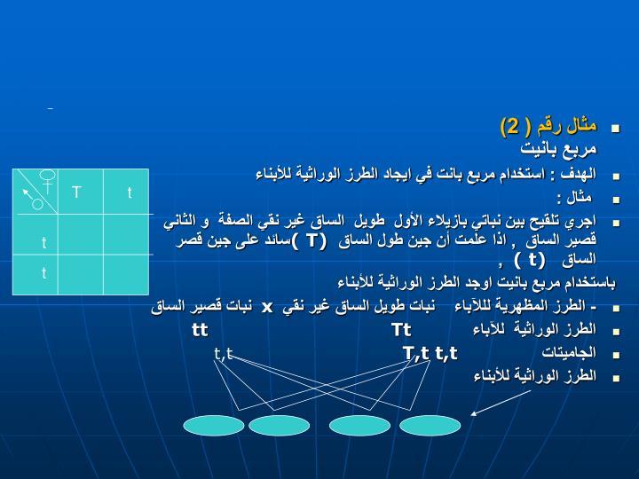 مثال رقم ( 2)