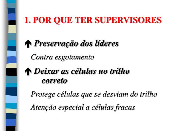 1. POR QUE TER SUPERVISORES