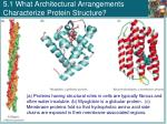 5 1 what architectural arrangements characterize protein structure1