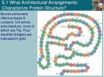5 1 what architectural arrangements characterize protein structure2