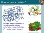 how to view a protein1