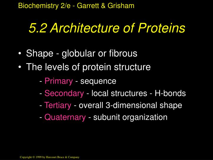 5.2 Architecture of Proteins