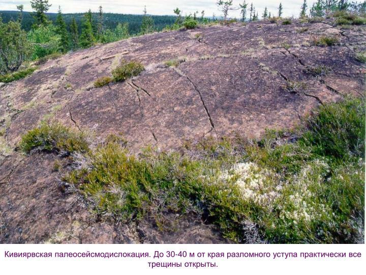 Кивиярвская палеосейсмодислокация. До 30-40 м от края разломного уступа практически все трещины открыты.