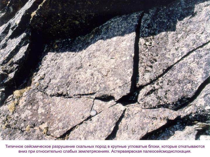 Типичное сейсмическое разрушение скальных пород в крупные угловатые блоки, которые откатываются вниз при относительно слабых землетрясениях. Астерваярвская палеосейсмодислокация.
