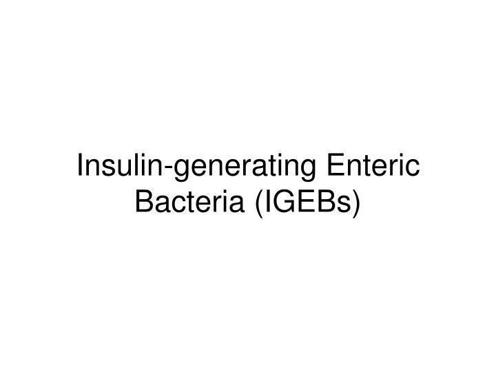 Insulin-generating Enteric Bacteria (IGEBs)