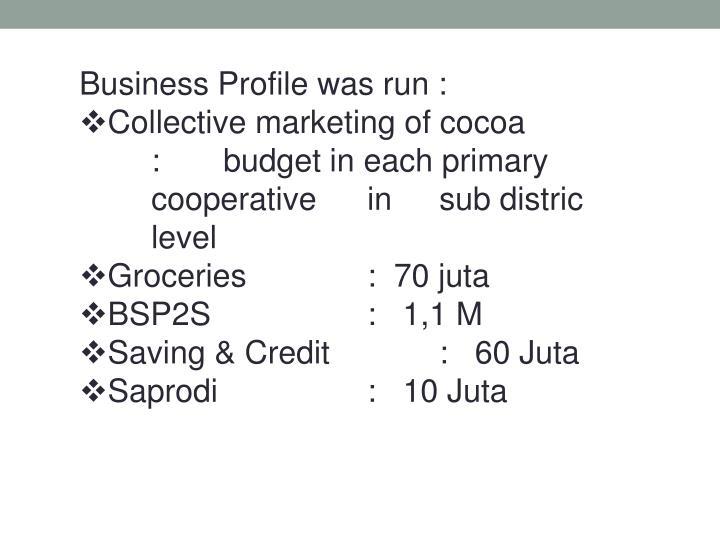 Business Profile was run :