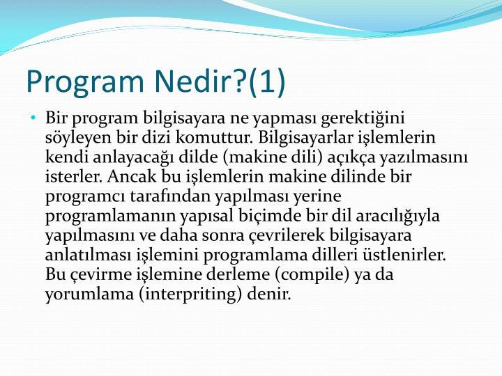 Program nedir 1