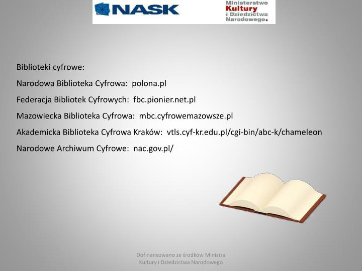 Biblioteki cyfrowe: