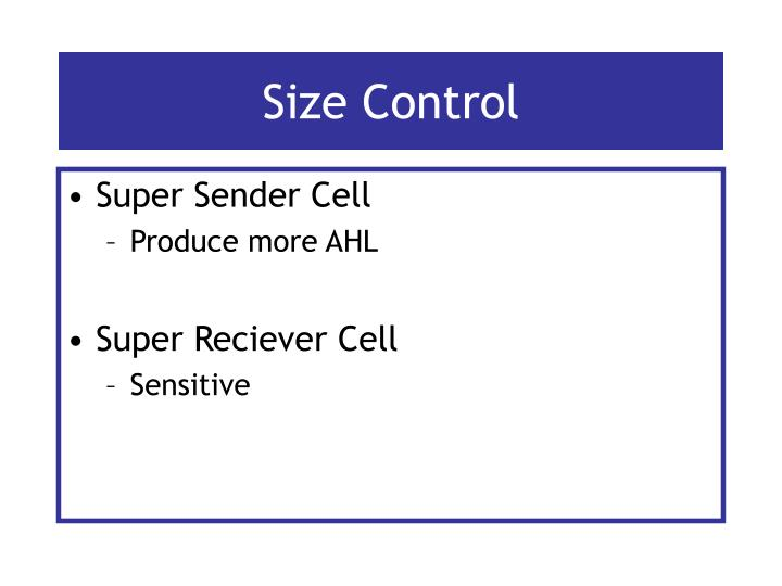 Size Control