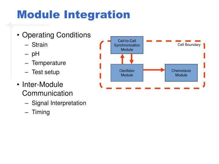 Module Integration