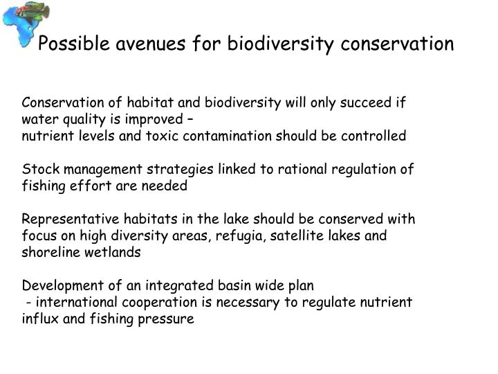 Possible avenues for biodiversity conservation