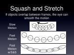 squash and stretch3