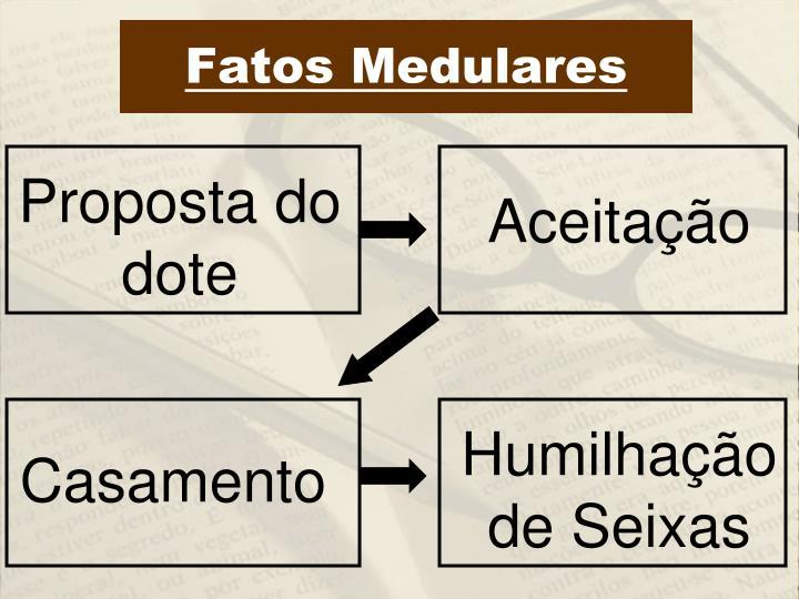 Fatos Medulares