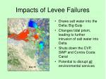 impacts of levee failures3