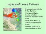 impacts of levee failures4