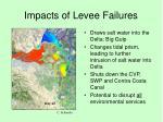 impacts of levee failures5