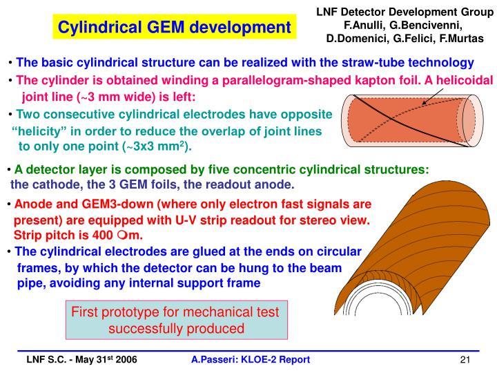 LNF Detector Development Group