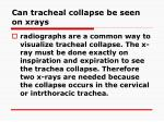can tracheal collapse be seen on xrays