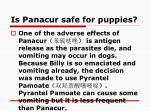 is panacur safe for puppies