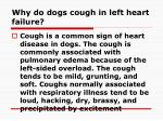 why do dogs cough in left heart failure