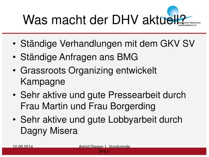 Was macht der DHV aktuell?