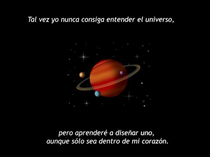 Tal vez yo nunca consiga entender el universo,