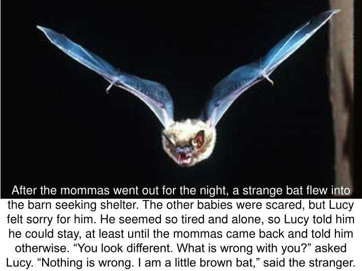 After the mommas went out for the night, a strange bat flew into