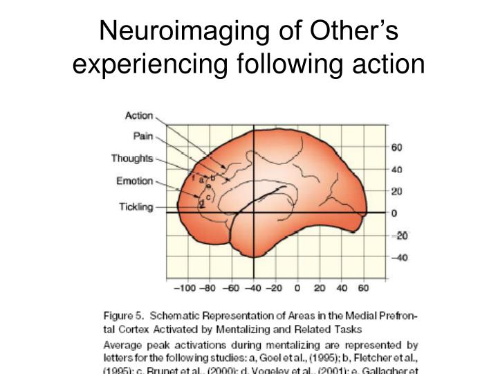 Neuroimaging of Other's experiencing following action