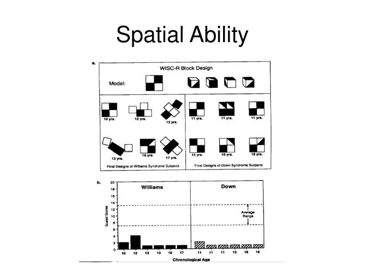 Spatial Ability