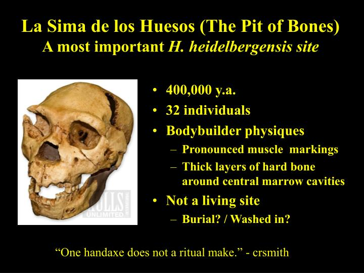 La Sima de los Huesos (The Pit of Bones)