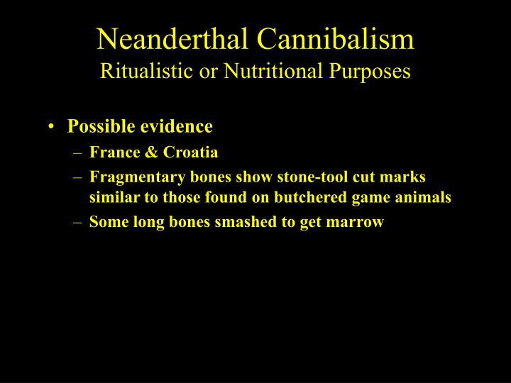 Neanderthal Cannibalism