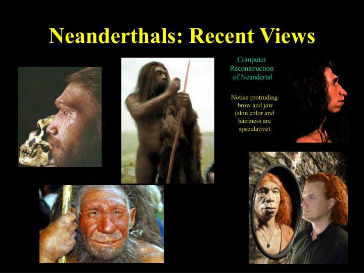 Neanderthals: Recent Views