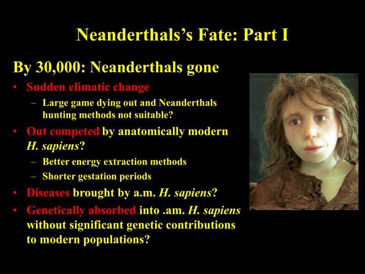 Neanderthals's Fate: Part I