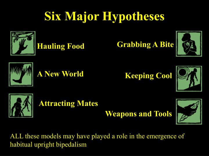 Six Major Hypotheses