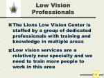 low vision professionals