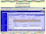assessment cardiovascular