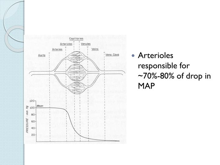 Arterioles responsible for ~70%-80% of drop in MAP