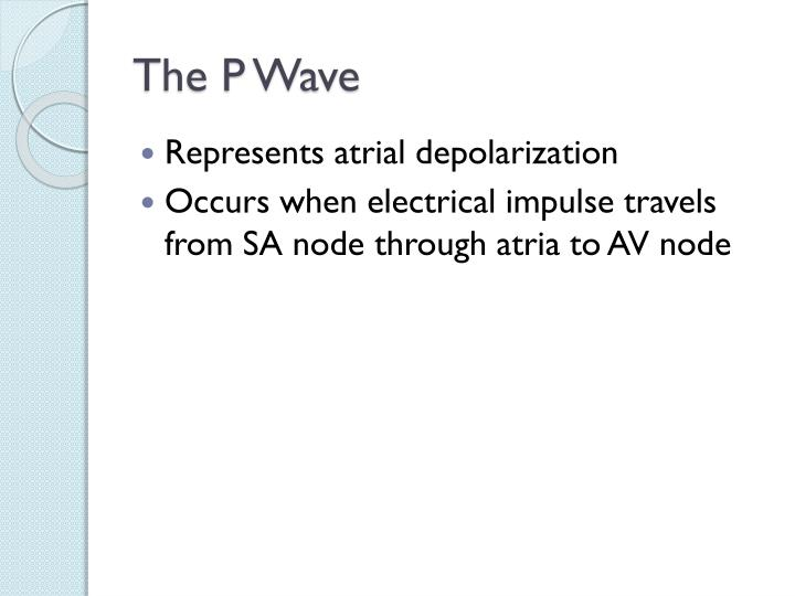 The P Wave