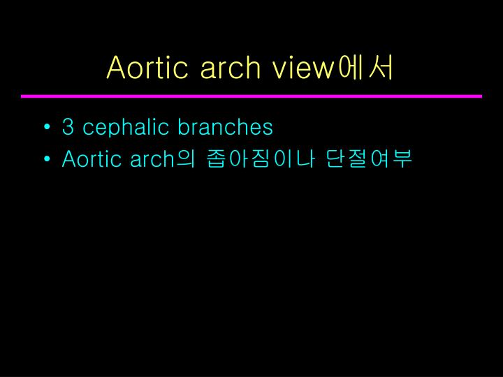 Aortic arch view