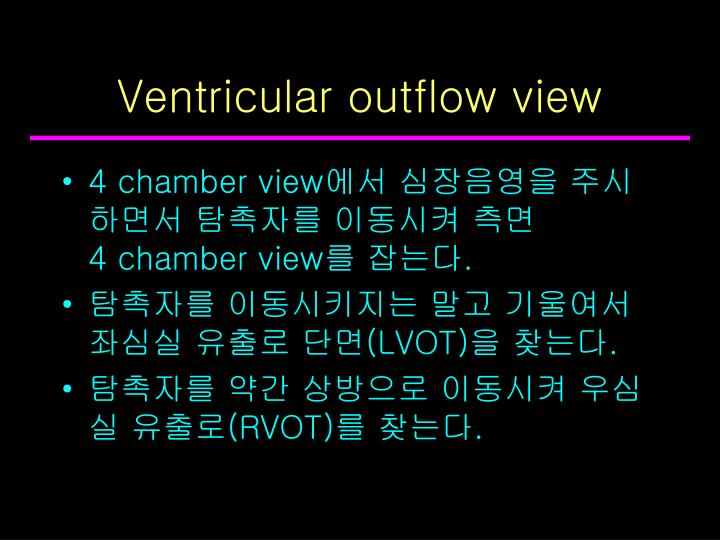 Ventricular outflow view